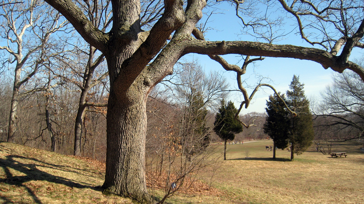 BeaverBrookReservation_Daderot_Wikimedia_2009.jpg