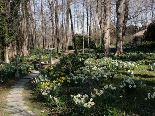 Blithewold mansion gardens arboretum the cultural landscape foundation for Blithewold mansion gardens arboretum