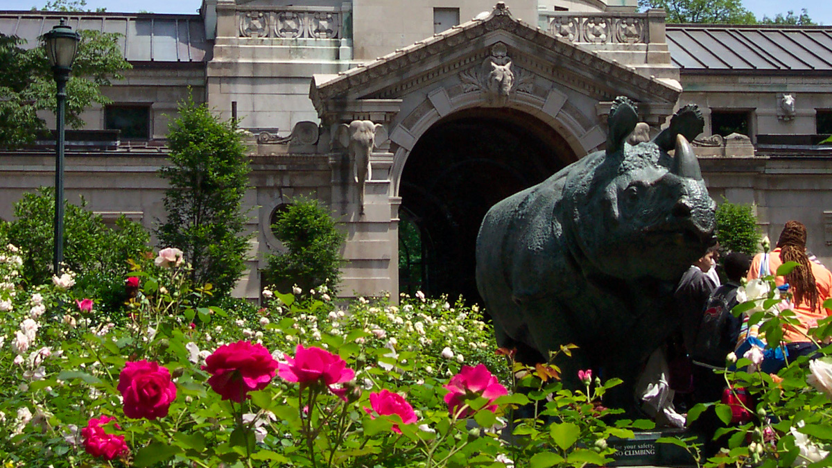 Bronx Zoo The Cultural Landscape Foundation