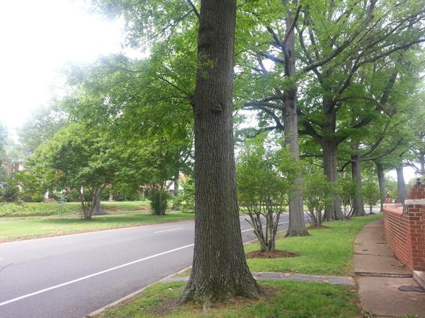Brookland-Parkway-8-2014.jpg