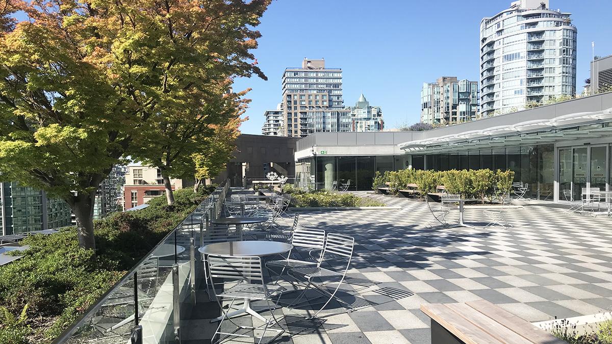 CANADA_BritishColumbia_Vancouver_VancouverPublicLibrary_byCharlesABirnbaum_2019_006_sig.jpg