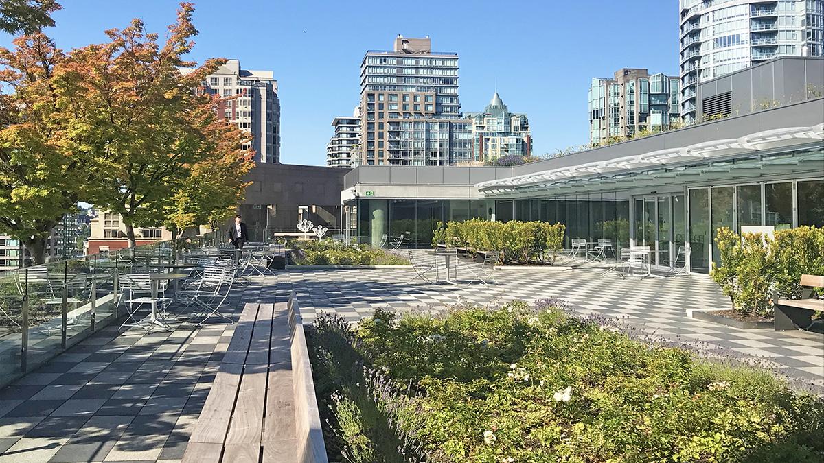 CANADA_BritishColumbia_Vancouver_VancouverPublicLibrary_byCharlesABirnbaum_2019_008_sig.jpg