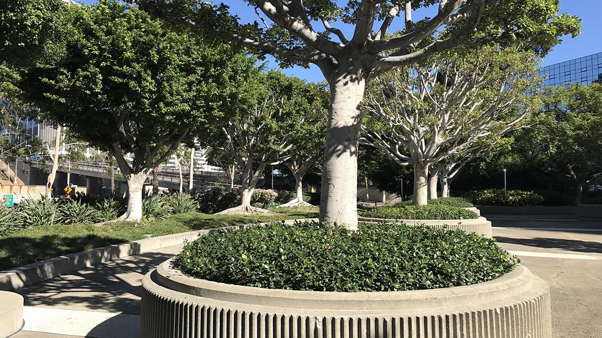 CA_LosAngeles_UnionBankSquare_CharlesABirnbaum_2017_38_sig_004.jpg