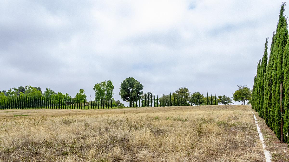 CA_SanDiego_MountHopeCemetery_byKelseyKaline_2019_007_sig_005.jpg