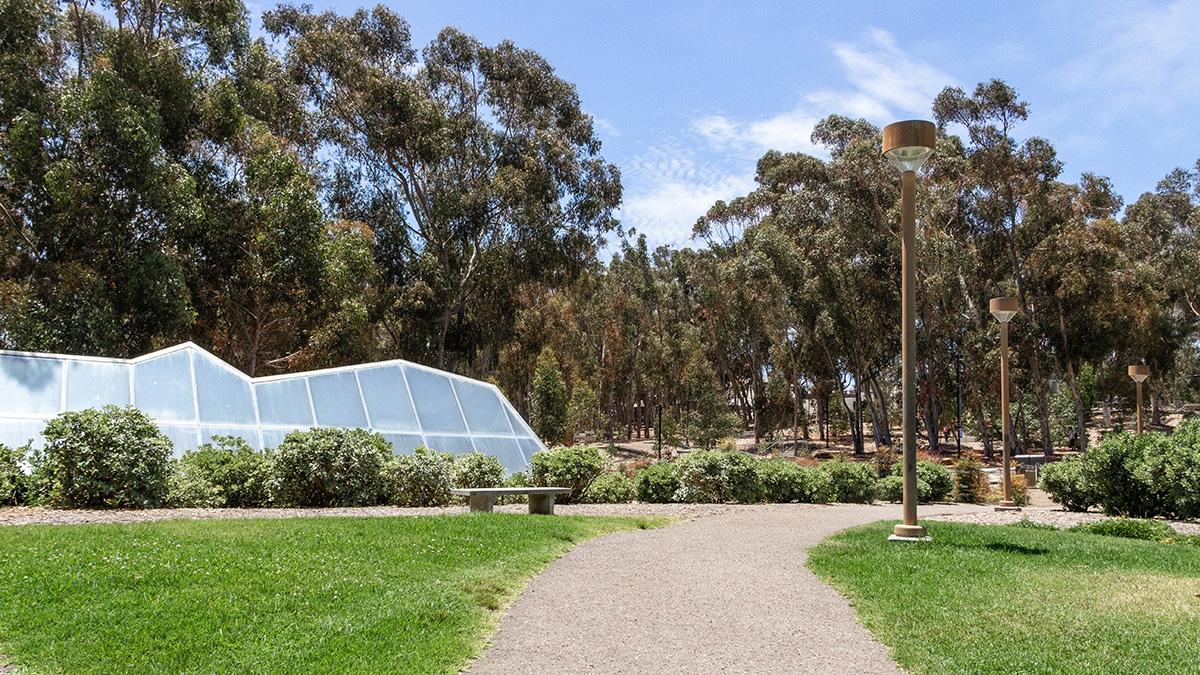 CA_SanDiego_UCSD_byKelseyKaline_2019_005_sig_004.jpg