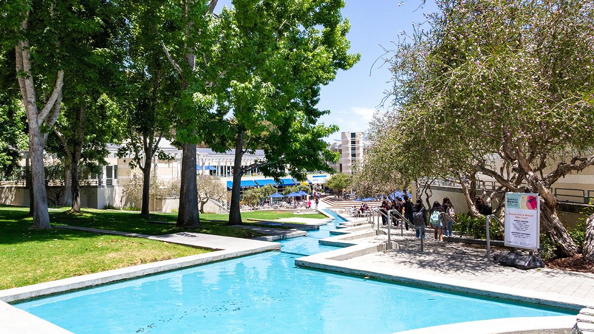 CA_SanDiego_UCSD_byKelseyKaline_2019_015_sig_006.jpg