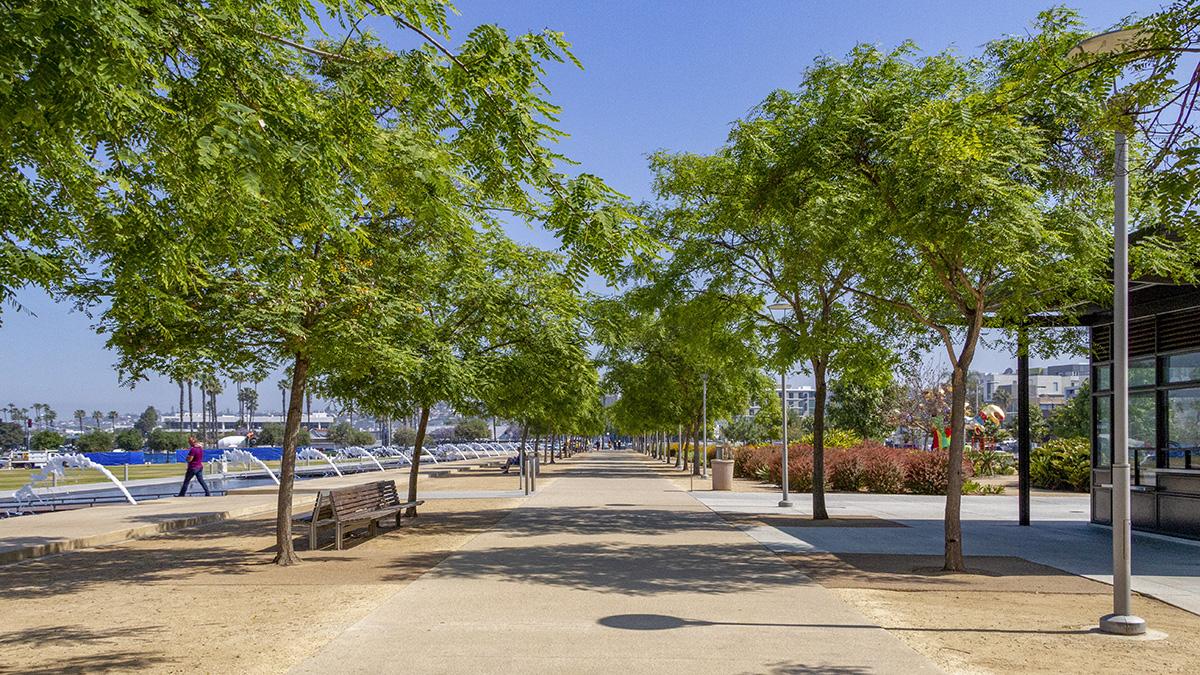 CA_SanDiego_WaterfrontPark_byKelseyKaline_2019_005_sig_002.jpg