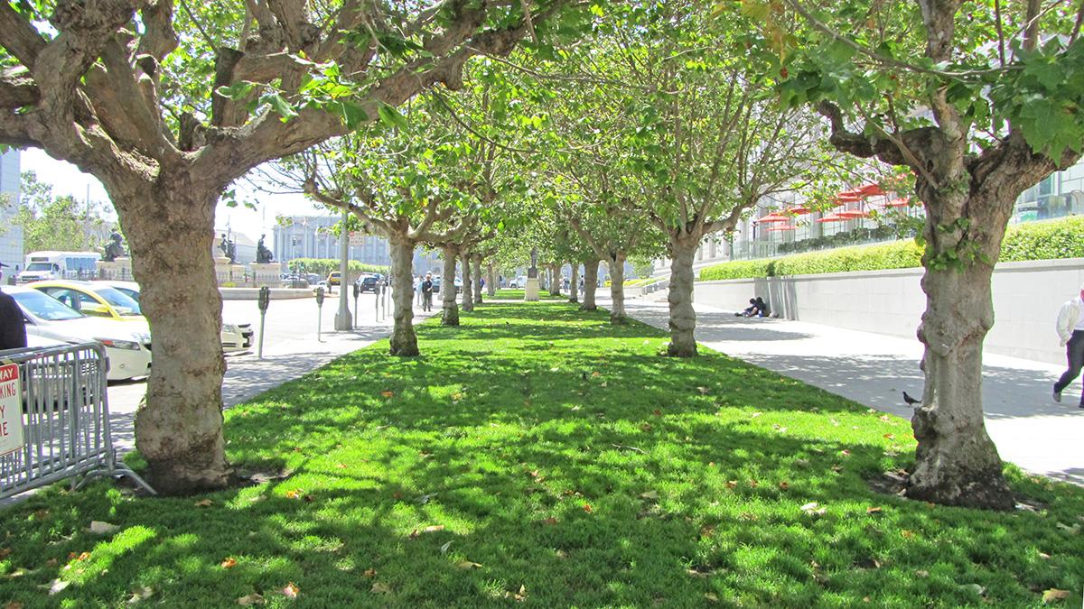 CA_SanFrancisco_UNPlaza_18_AlexisWoods_2011_sig_003.jpg