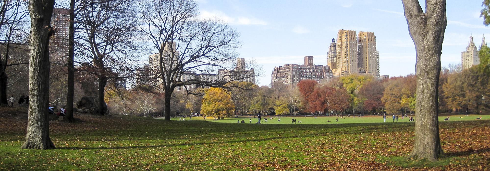 NYC_CentralPark_hero_CharlesBirnbaum_2009_02.jpg
