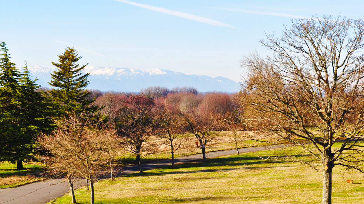 Discovery Park | The Cultural Landscape Foundation