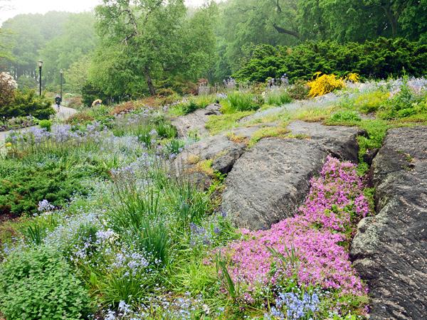 Fort-Tryon_Heather-Garden-05-photo-Tony-Kirman.jpg