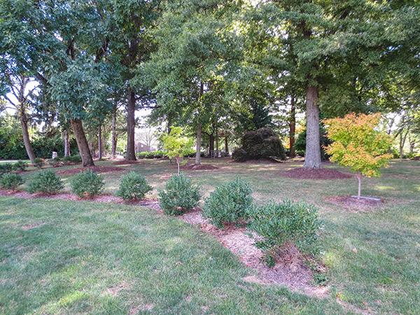 Garden-of-Righteous-Gentiles-10-Ryan-Woodward-2014.jpg
