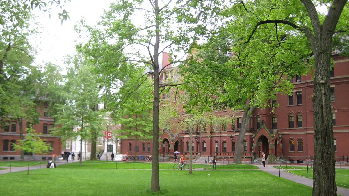 HarvardUniversity_signature_MikeAlbert_2012_12.jpg
