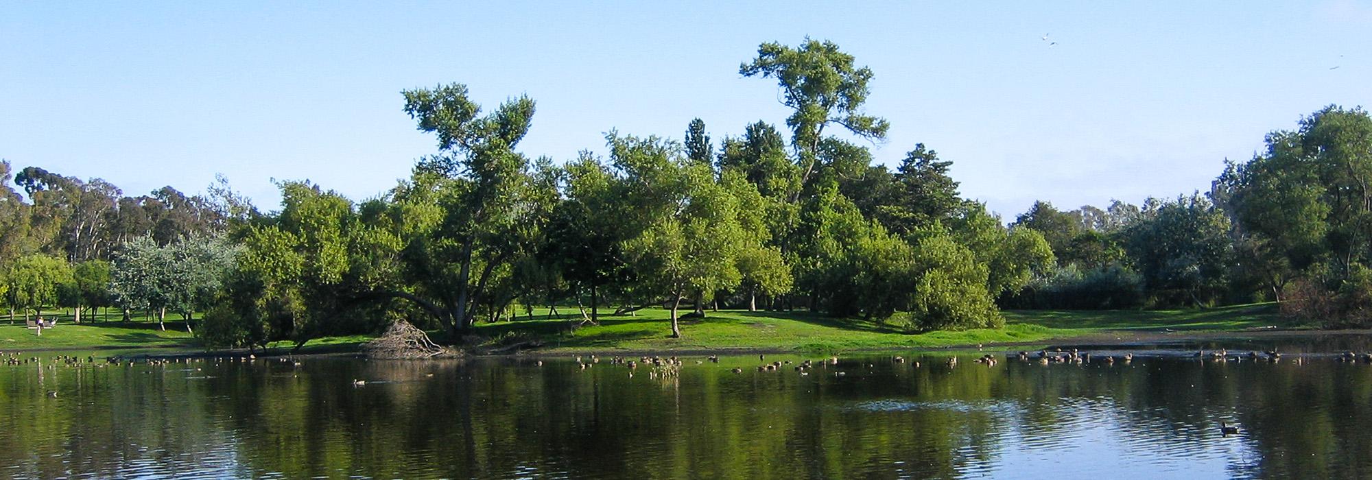 HuntingtonBeachCentralPark_WikimediaCommons.jpg