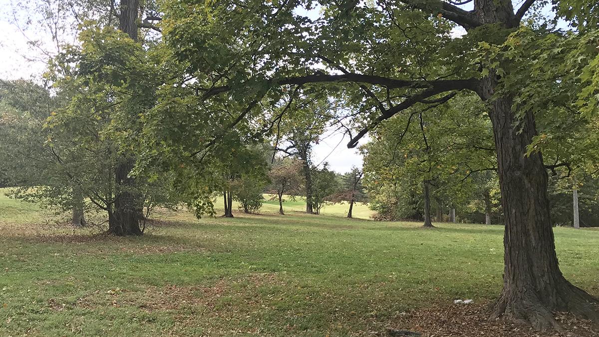 KY_Louisville_IroquoisPark_byCharlesABirnbaum_2019_003_sig_002.jpg