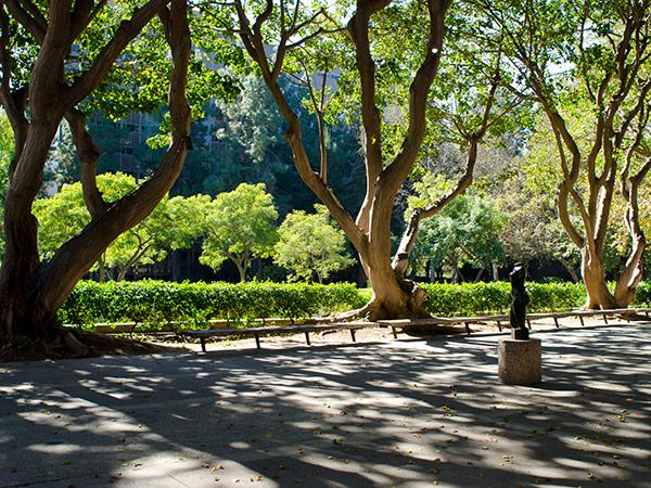 Murphy-Sculpture-Garden--Matthew_Traucht2014-3.jpg