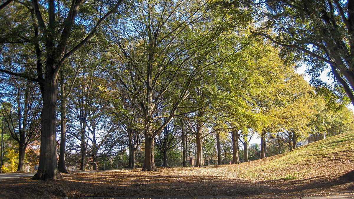 John Chavis Memorial Park | The Cultural Landscape Foundation