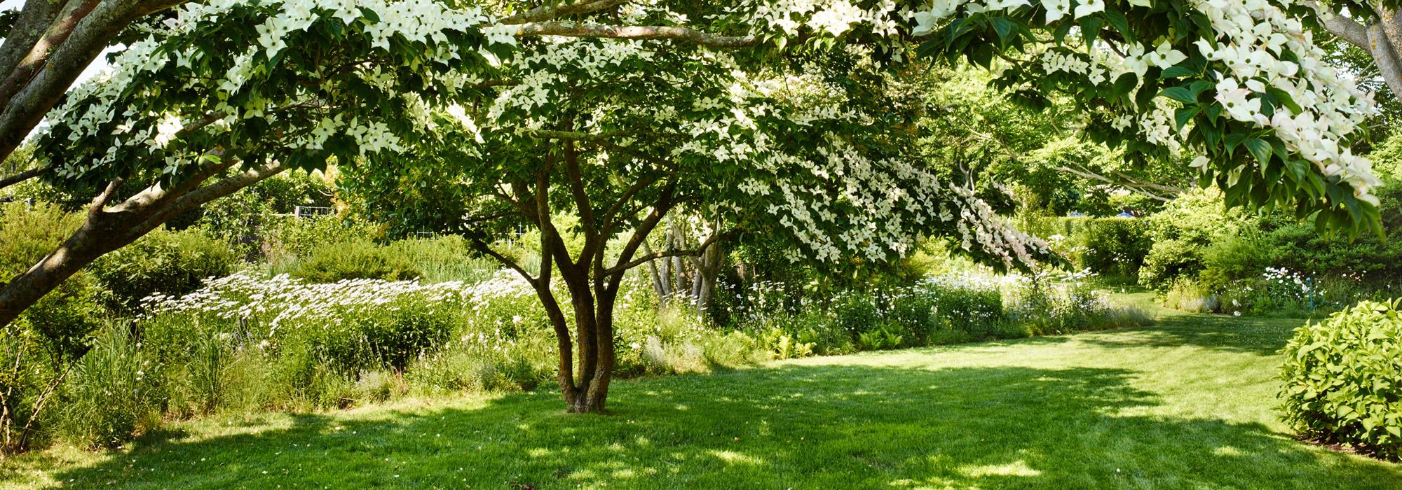 NY_Hamptons_Edwina vG - apm lr CF004524_Photoby_Allan Pollack-Morris Hero.jpg
