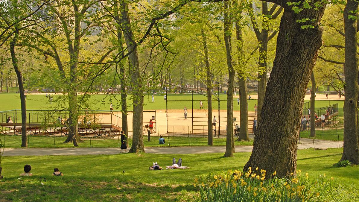 NY_NYC_CentralParkChildrensDist_04_CourtesyCPC_2008_sig.jpg