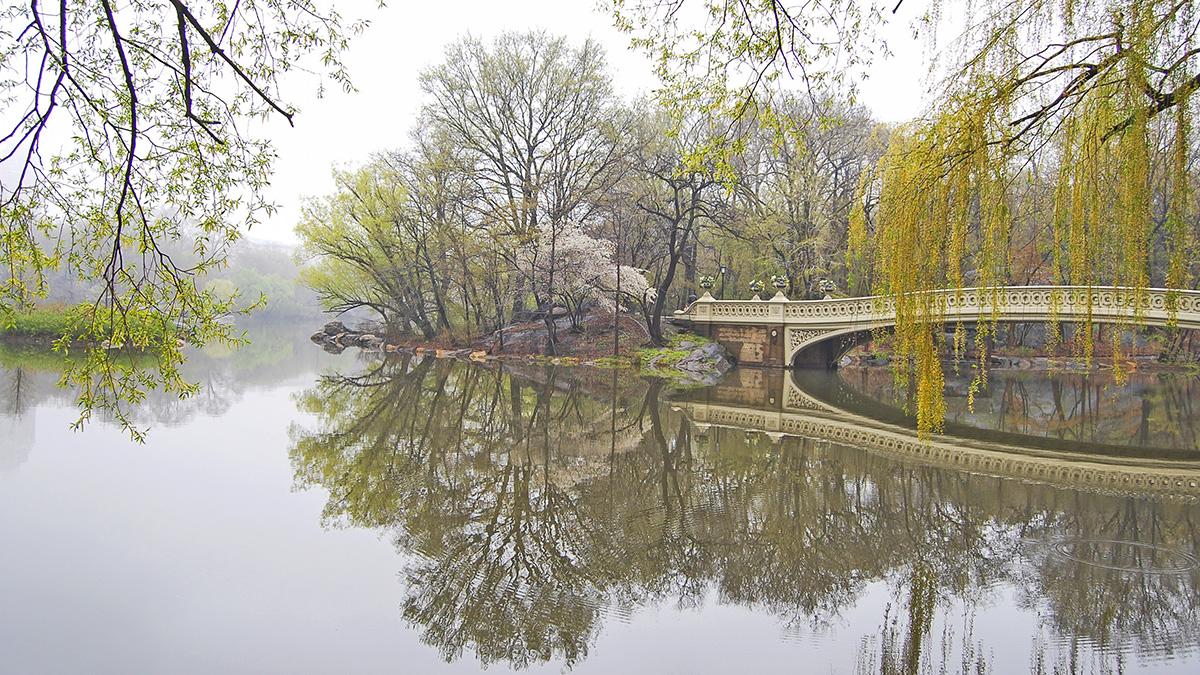 NY_NYC_CentralParkLake_03_CourtesyCPC_2009_sig.jpg