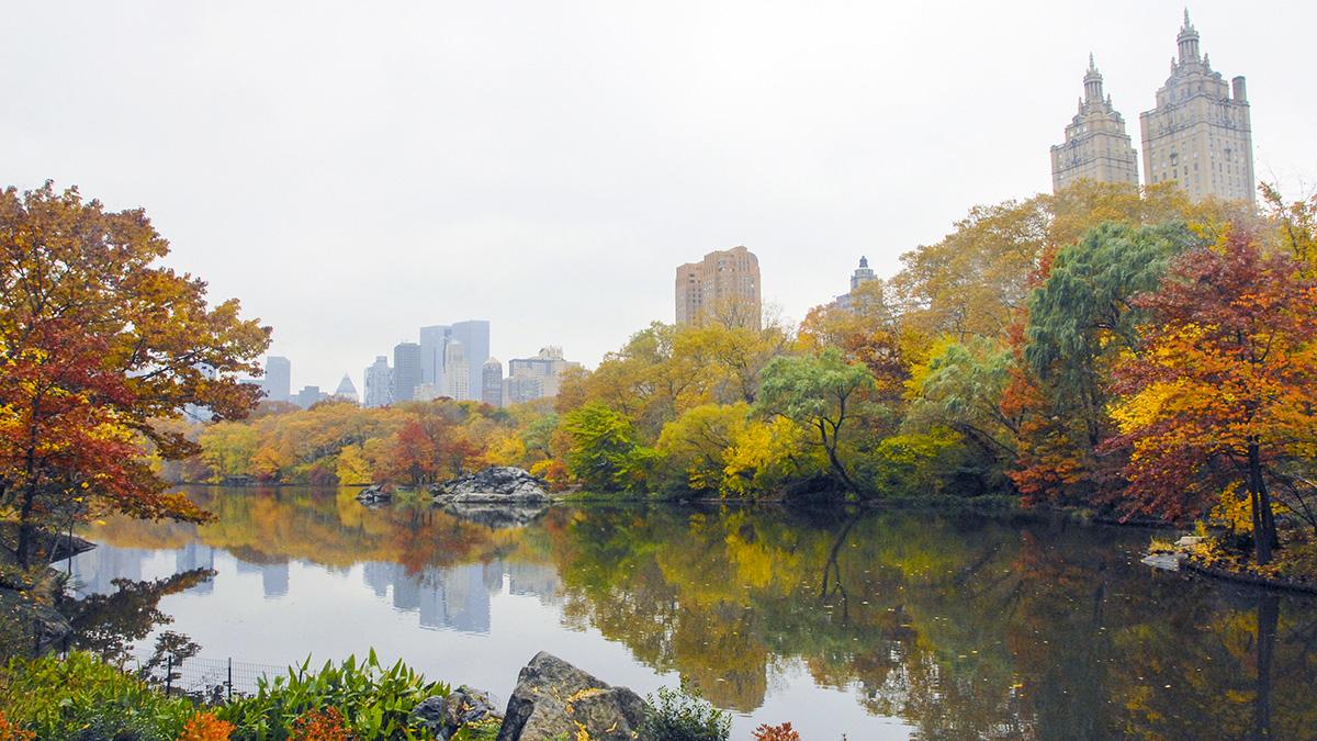 NY_NYC_CentralParkLake_06_CourtesyCPC_2008_sig.jpg
