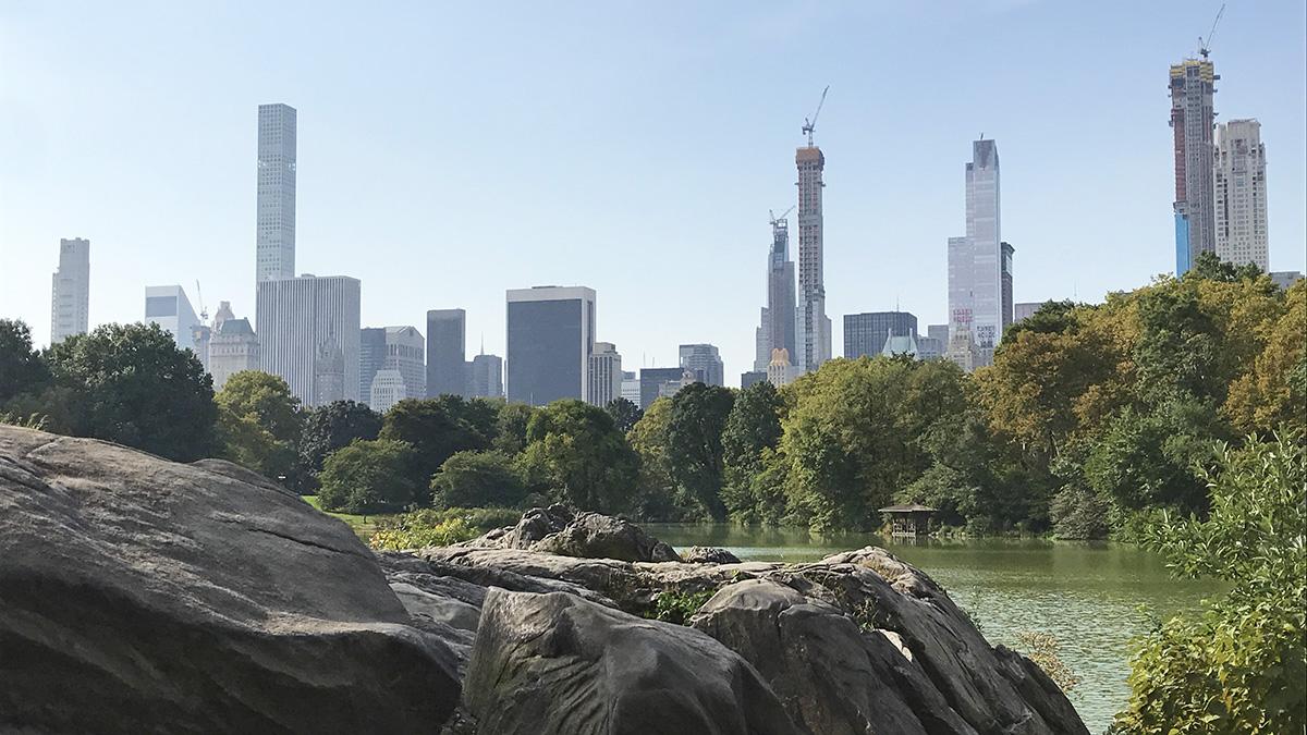 NY_NYC_CentralPark_byCharlesABirnbaum_2018_022_sig.jpg