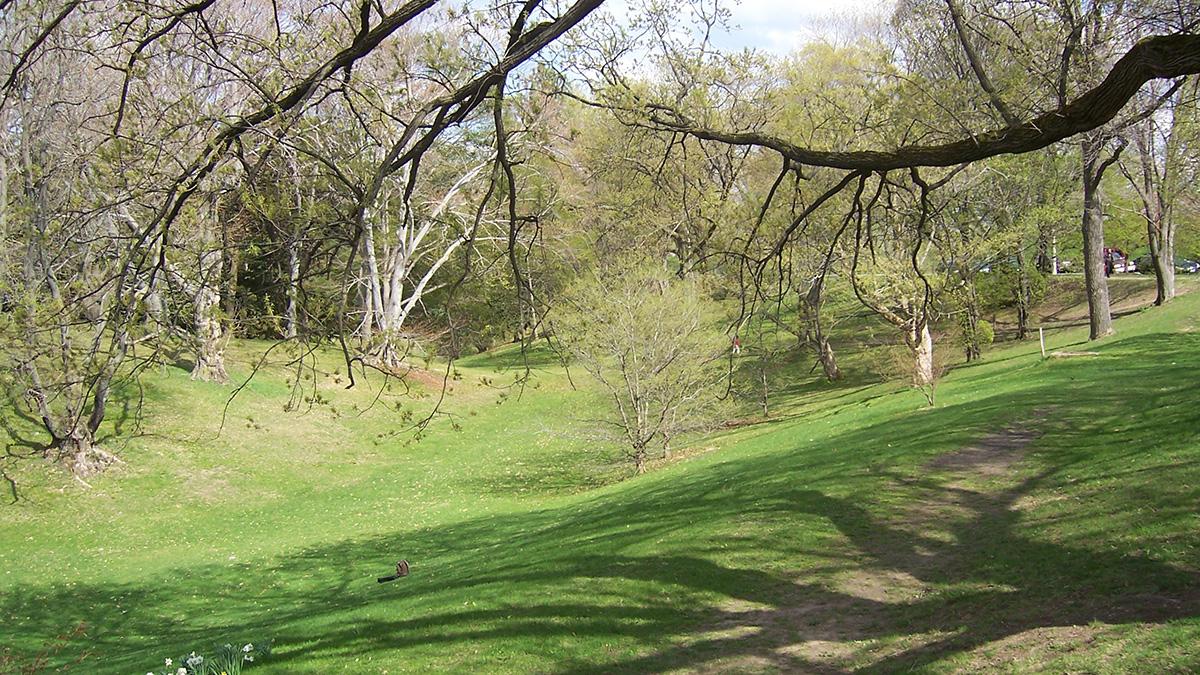 NY_Rochester_HighlandPark_byKateAntoniades_2009_001_sig_003.jpg