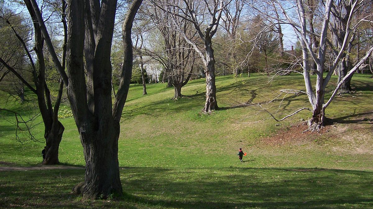 NY_Rochester_HighlandPark_byKateAntoniades_2009_004_sig_004.jpg