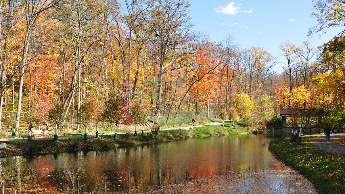 OH_Dayton_Hills&Dales-Metropark_byTedBobosh_2012_016_sig_006.jpg
