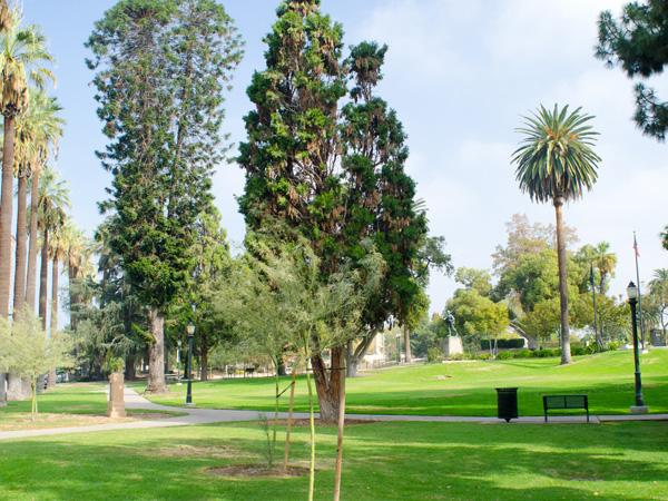 Pasadena_Memorial_Park-Matthew_Traucht2014-2.jpg