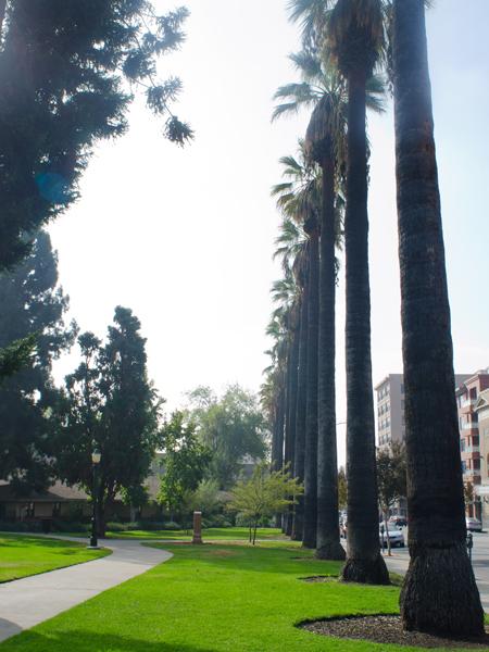 Pasadena_Memorial_Park-Matthew_Traucht2014-7.jpg