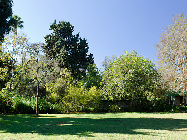 Rancho_Los_Cerritos-Matthew_Traucht2014-5.jpg