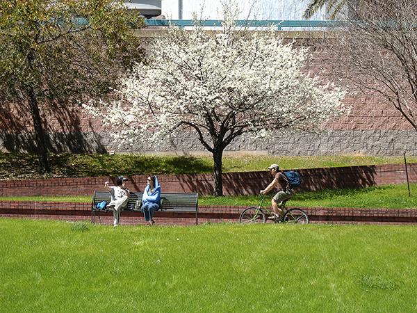 Sesquicentennial-Park-4-Lauren-Griffith.jpg