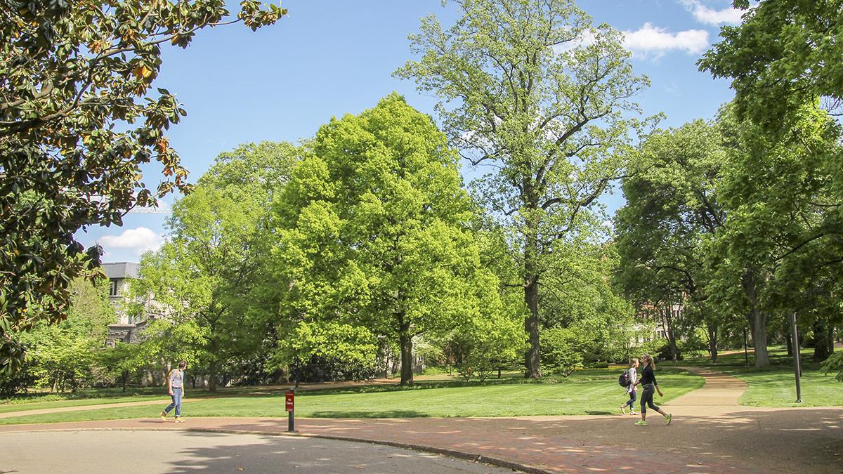 TN_Nashville_VanderbiltUniversity_byCoreySeeman-Flickr_2015_030_sig_008.jpg