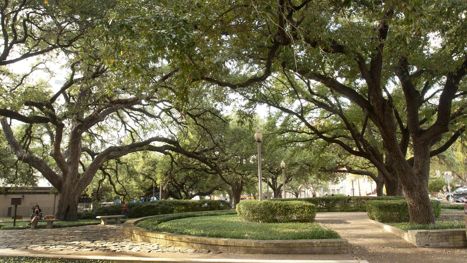 TX_Austin_UniversityofTexas_signature_MarshaMiller_2007_03.jpg