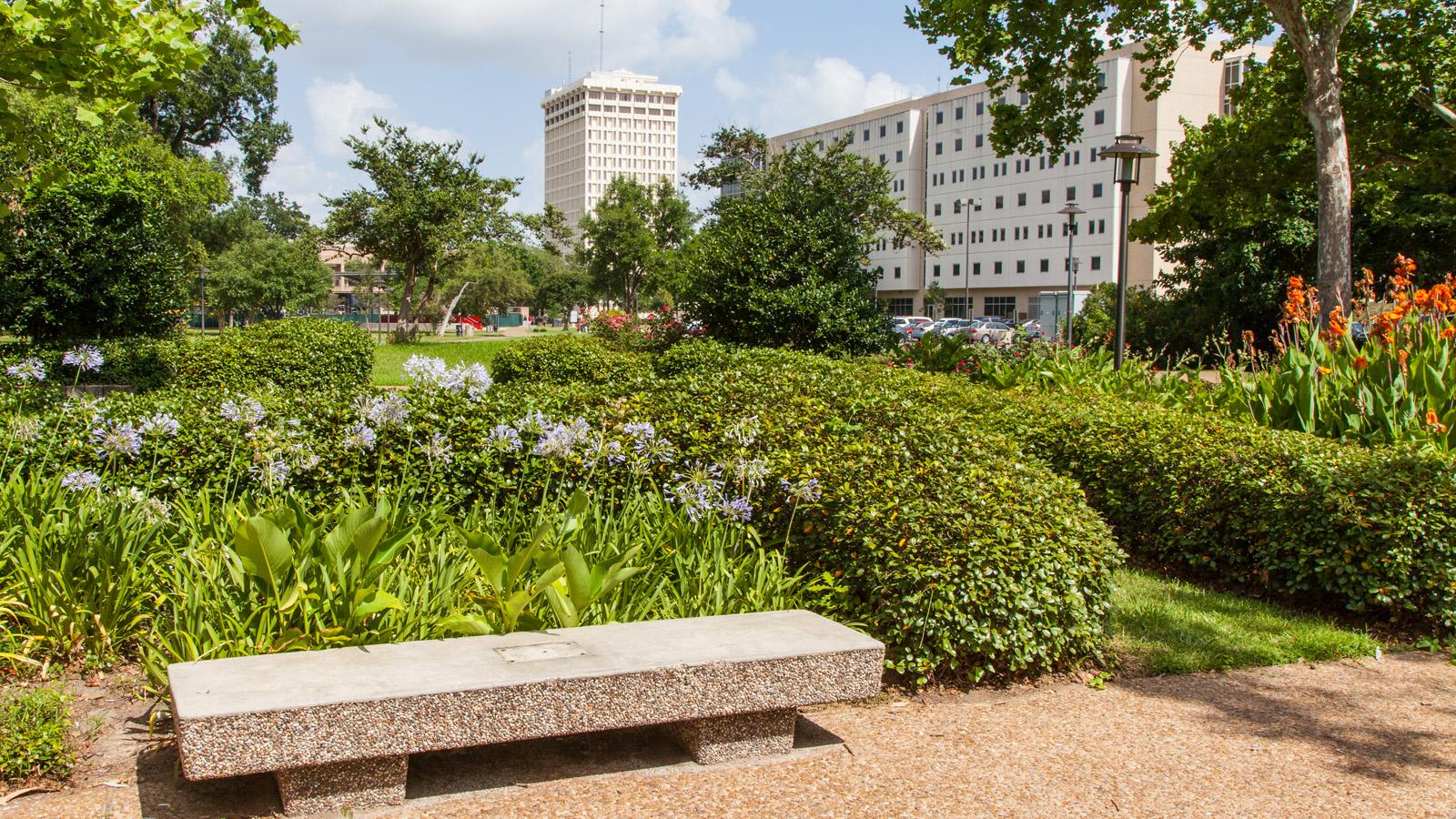 TX_Houston_UniversityofHouston_signature_BarrettDoherty_2014_02.jpg