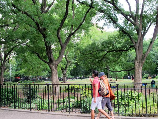 TompkinsSquarePark1-NYC-GraceLo-2012.jpg