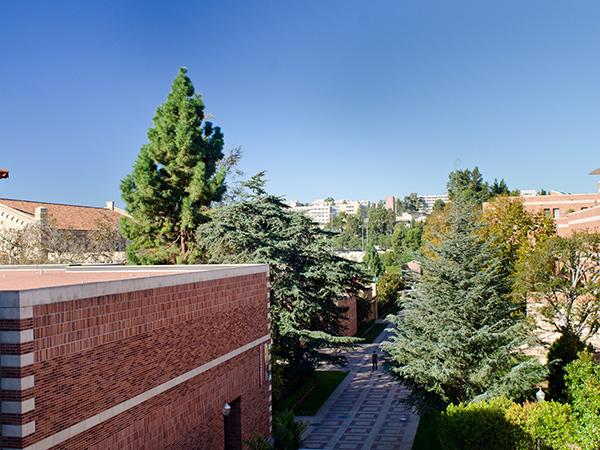 UCLA-Matthew_Traucht2014-10.jpg