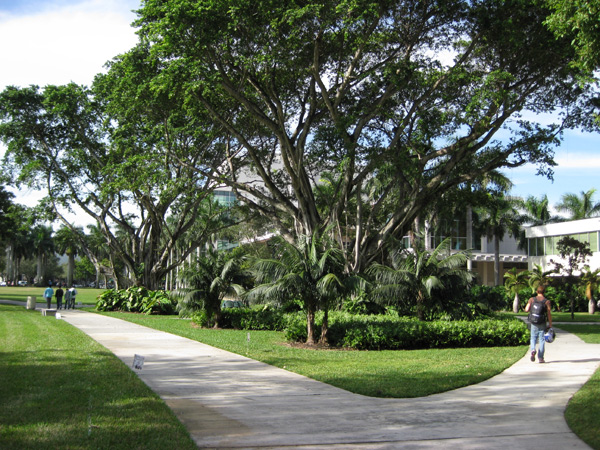 University-of-Miami4_NelsonByrdWoltz2009.jpg