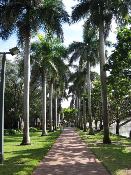 University-of-Miami6_NelsonByrdWoltz2009.jpg
