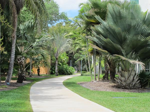 University-of-Miami7_RoccoCeo2014.jpg