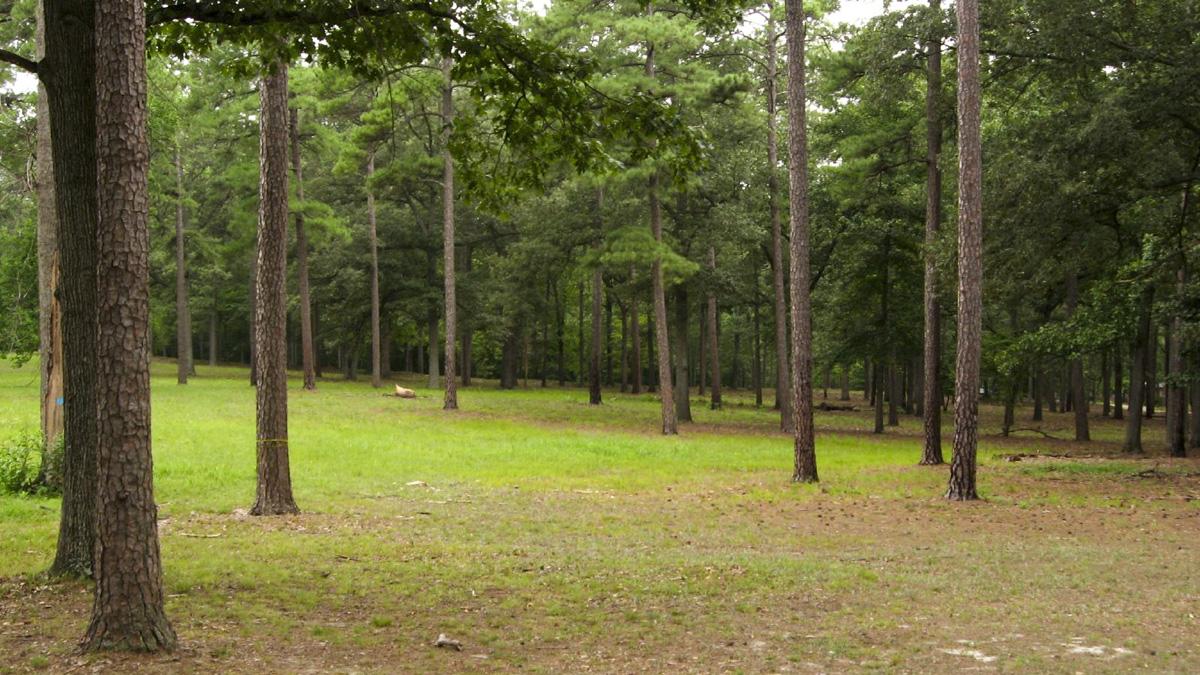 VA_Richmond_ColdHarborBattlefield_KenLund_2008_04.jpg