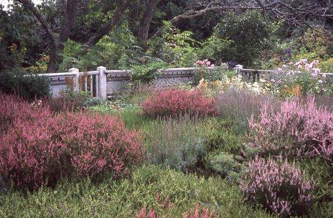 farrand_terrace_garden.jpg